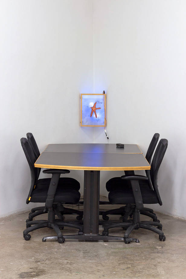 office with a starfish inside a whiteboard