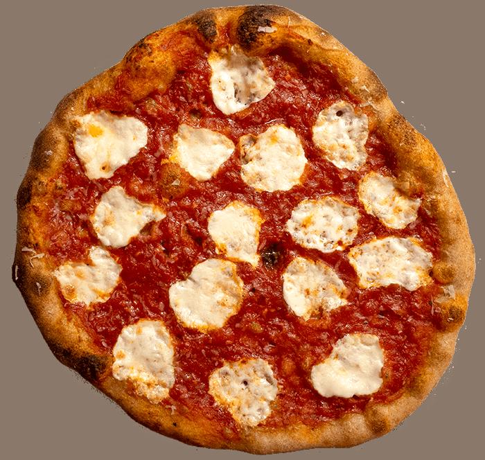 whole wheat pizza with fresh mozzarella